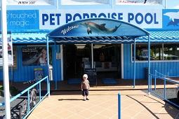 The Porpoise Pool